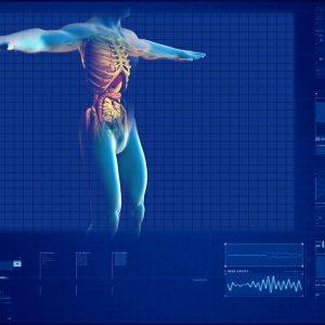 anatomie et bypass gastrique